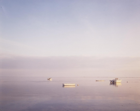 Several white boats set against a background of a purple and grey sky