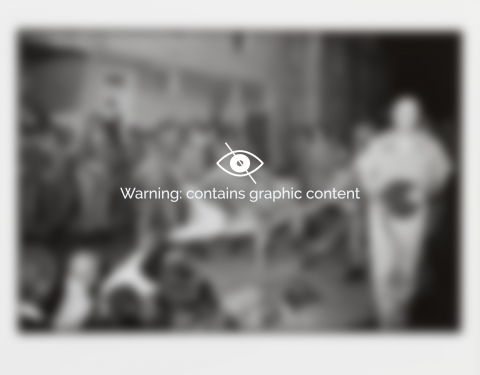 A blurred image of a photograph with the following text overlayed: Warning, Contains graphic content