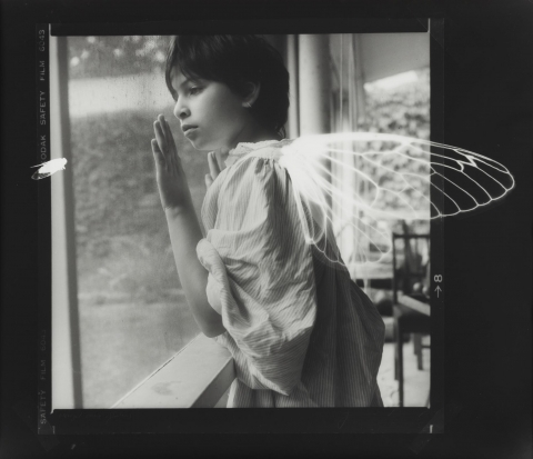 Black and white image of a child looking out a window with white wings superimposed on her back and a white insect watching her.